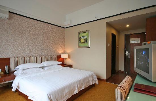 Jiang Bin Holiday Hotel: 江景,市景单人房