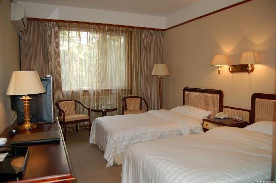 Deyang Hotel: 标准间