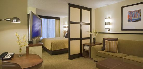 Hyatt Place Minneapolis/Eden Prairie: king_room
