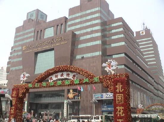 Shenyang, Kina: 20090201121116920