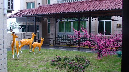 Qixinghu Resort: 屋顶花园