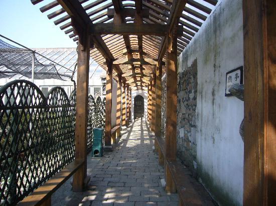 Suzhou, China: 暗道(此地很少有人)