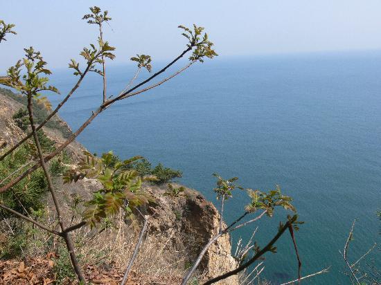 Dalian, China: 从滨海大道上望去