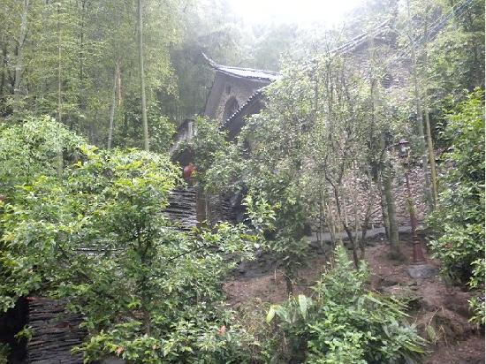 Julongdong Farmhouse: 别墅远景