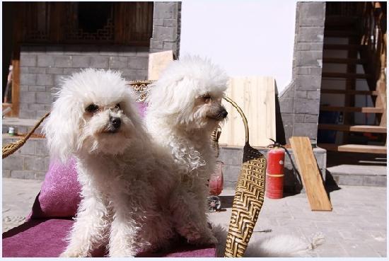 Qingxi Inn: w2