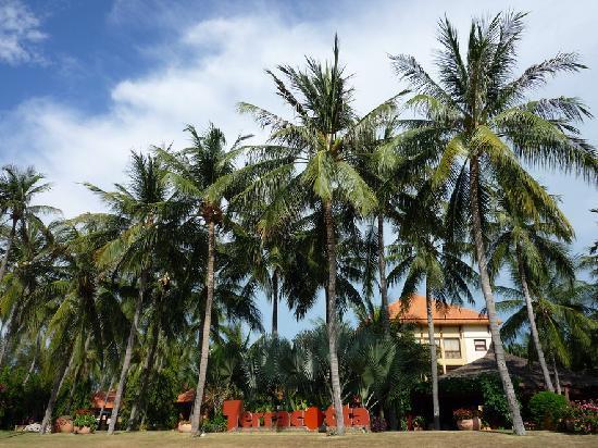 Terracotta Resort : P1050912_缩小大小