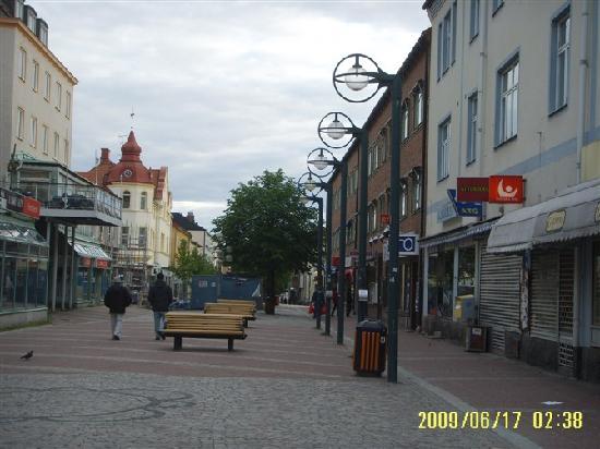 Ludvika镇