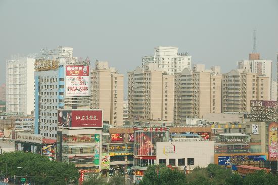 Maple International Hotel: 窗外风景