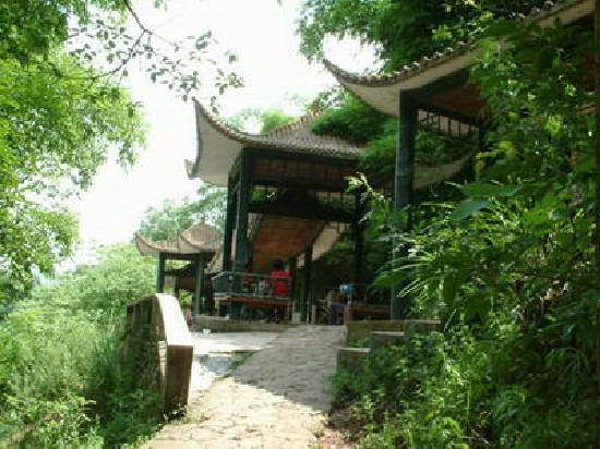 Mianyang Fenghuang Mountain Forest Park: 3