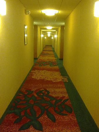 Residence Inn Chattanooga Downtown: aisle