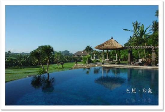 Bumi Ubud Resort: bumi的泳池