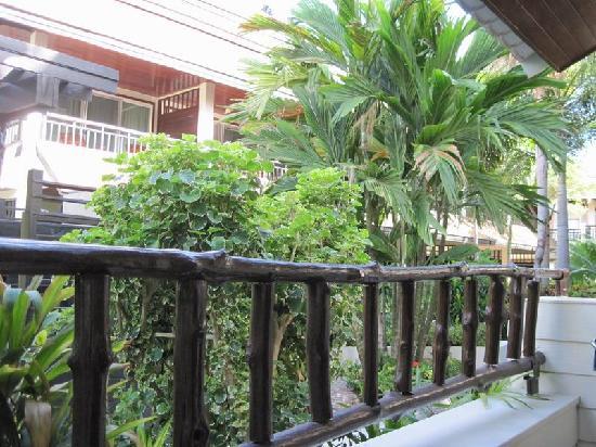Phi Phi Banyan Villa: 房间阳台往外看