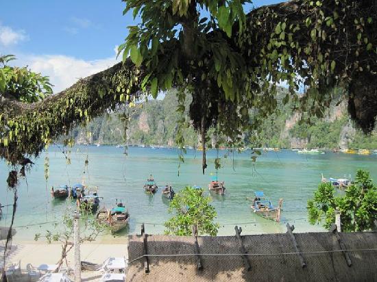 Phi Phi Banyan Villa: 公共露台