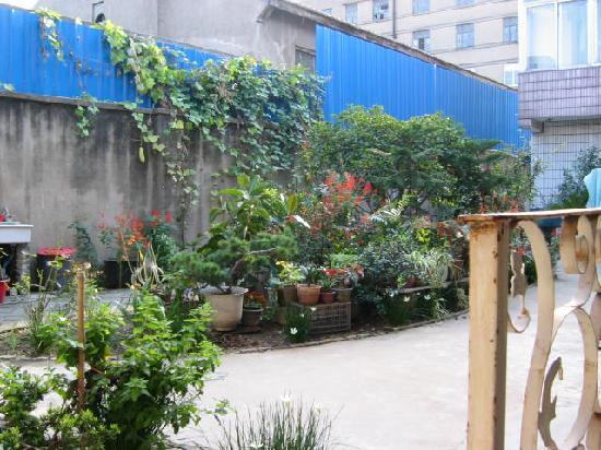 Qifei Guest House: 前院花圃