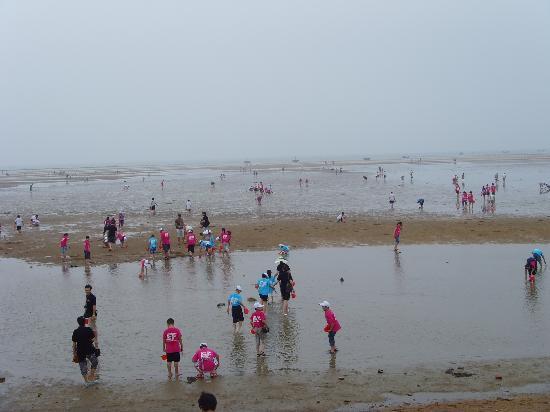 Rizhao Liujiawan Seahunting Spot: 赶海园海滩