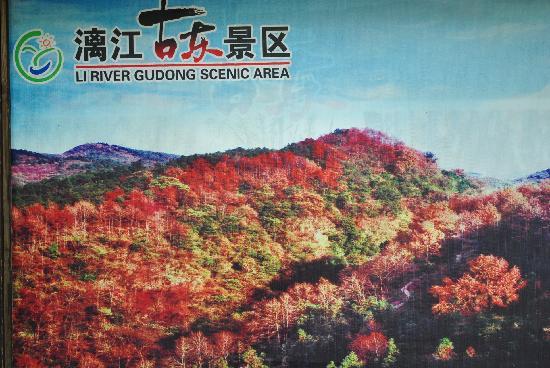 Gudong Scenic Resort: DSC_0245