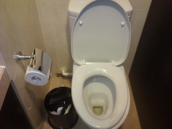 Royal View Hotel: 没有打扫的厕所