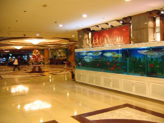 Furama Hotel Hunan: 非常漂亮的大堂