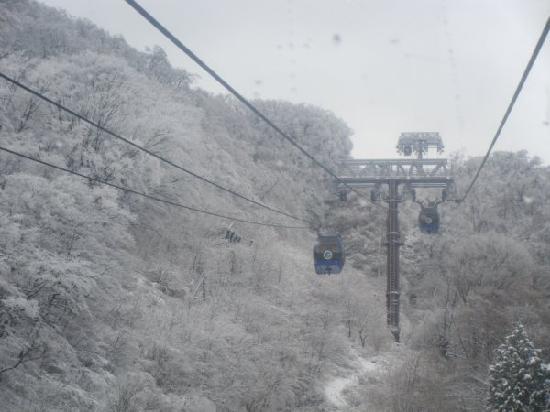 Hakone-machi, Japan: 这是从别馆去大涌谷的途中之空中索道缆车