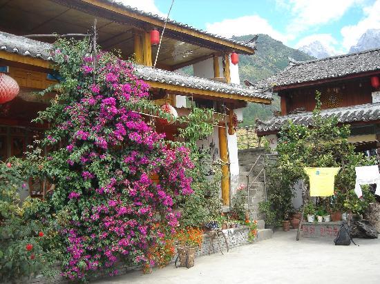Naxi Family Guesthouse : 院子