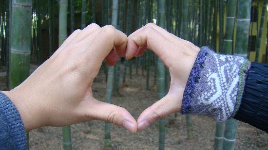 Zhu Dong Tian: 心形后的竹林