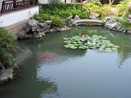 Overseas Chinese Hotel: 花园式酒店