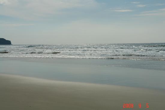 Nexus Resort Golf Course: 美丽的海边