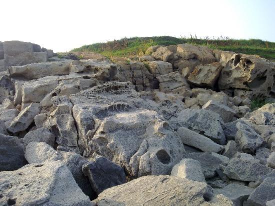 Chrysanthemum Island: 石头