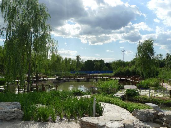Haidian Park: 小石阶