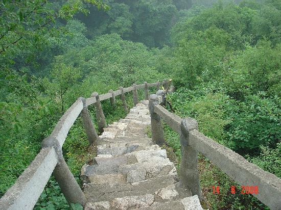 Jiulong Pond Scenic Resort of Qinling: 龙脊梁