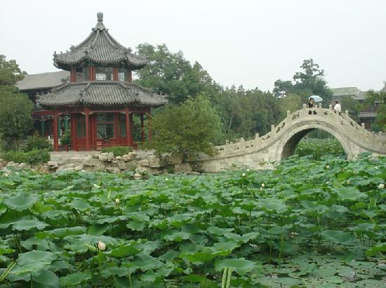 Restaurants in Baoding