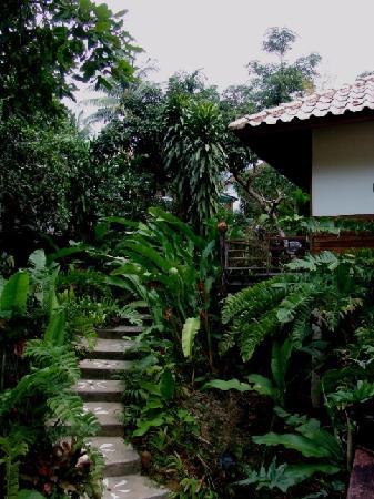 Baan Sansabay Resort : 可爱的木屋