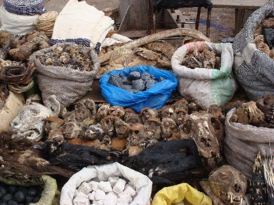 Bamako Artisan Market: 恐怖的猴头兽骨