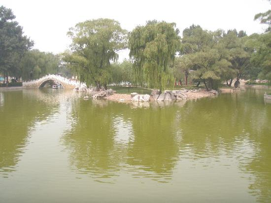 Hongdu Express Inn: 临近公园