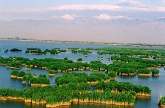 Ningxia, الصين: 沙湖