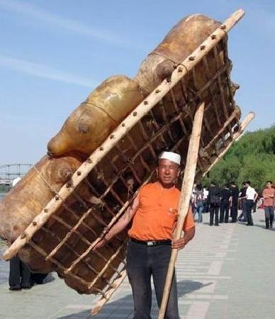 Ningxia, الصين: 羊皮筏子