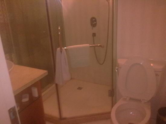 Haolisen Business Hotel : 卫生间