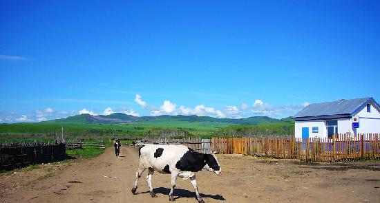 Eerguna, Kina: 乡间小路