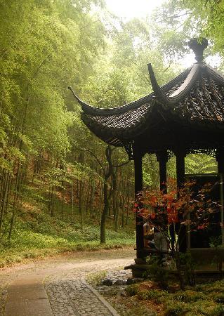 Yunxi Zhujing Scenic Resort