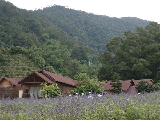 Panlong Gorge Ecological Resort
