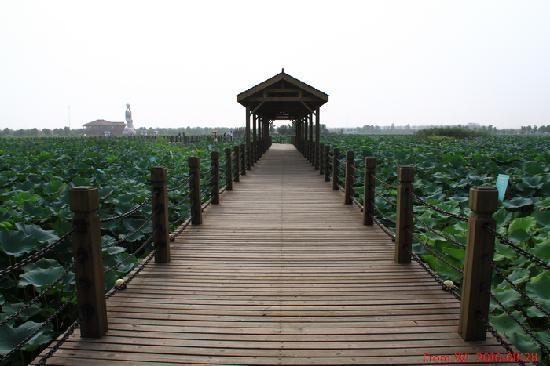 Pondoflotus Wetland Park