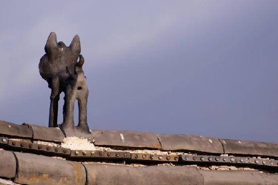 The Bruce Chalet: 走廊的天空
