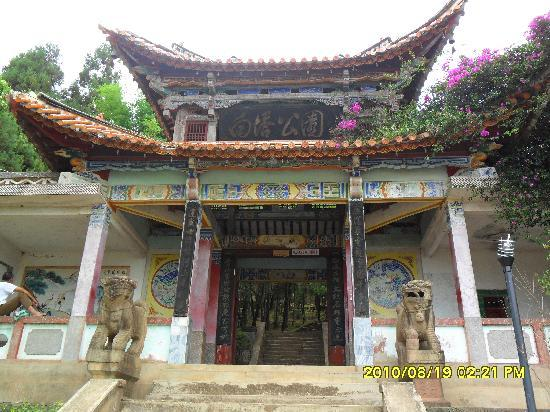 Dayao County, China: 瀑布