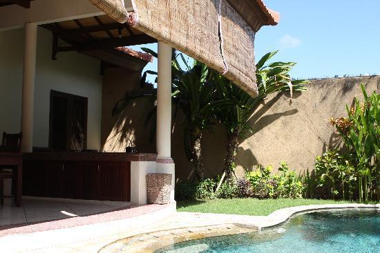 Grand Bali Villa: 大厅和泳池