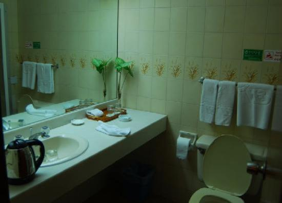 Hai Bin Hotel: 洗手间内还算清洁