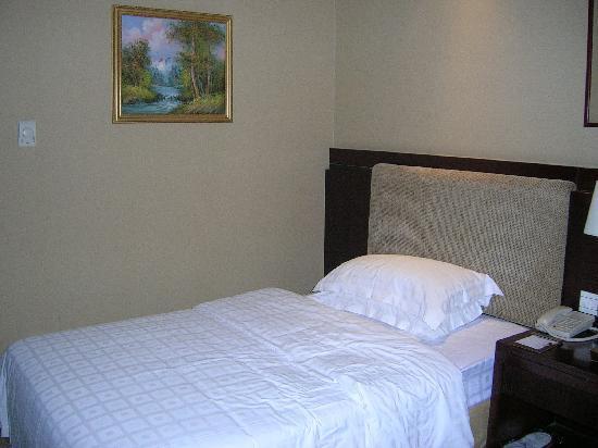 Vanguard Hotel : 房间内