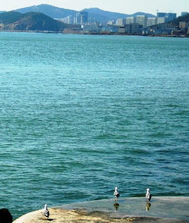 Dalian, China: 前面是蔚蓝的大海