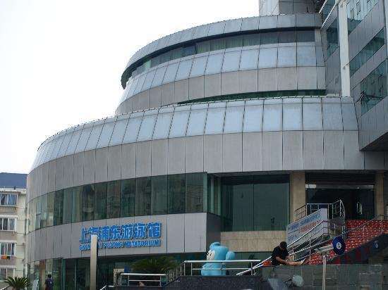 New Concept Hotel : 到达世博4号门旁的上海浦东游泳馆,9:35