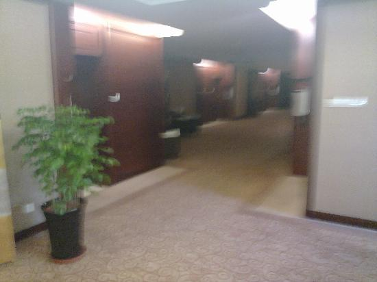 Ningwozhuang Hotel : 20100909044