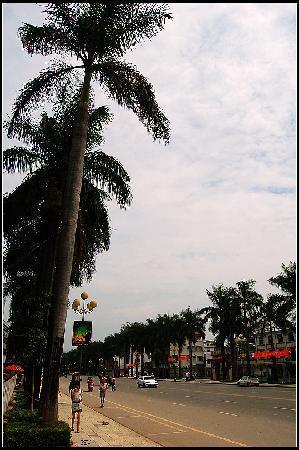 Ruili River-Daying River Scenic Resort : 街上